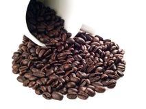 kaffepöl för 5 böna Fotografering för Bildbyråer