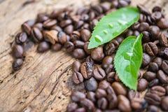 Kaffeprodukter, kaffebroms Arkivfoto