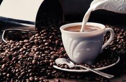 Kaffesamling 3 royaltyfri fotografi