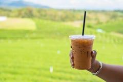 Kaffet i handen som på rymmer berget med morgonljus thailand royaltyfri bild