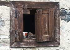 Kaffetid på gammalt fönster royaltyfri foto