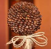Kaffeträd, gjord hand - Royaltyfria Foton