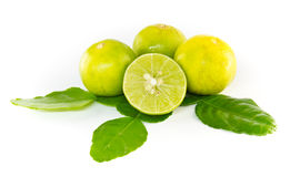 Kaffir leaves and lime. On white background Stock Photos