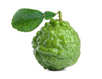 Kaffir lime Royalty Free Stock Images