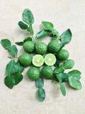 Kaffir Lime or Bergamot. On plywood background royalty free stock image