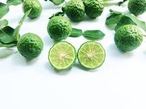 Kaffir Lime or Bergamot. On white background stock images