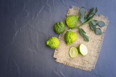 Kaffir lime on black background is fruits and leaves are used as a spice Royalty Free Stock Images