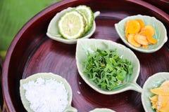 Kaffir lime, curcuma, zingiber, camphor, pandanus Stock Photography