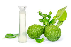 Kaffir lime extract oil. On white background royalty free stock images