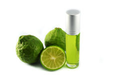 Kaffir lime extract oil. On white background stock photography