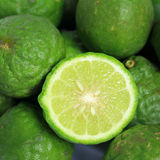 Kaffir Lime Stock Photos