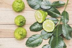 Kaffir lime herbs fresh Royalty Free Stock Images