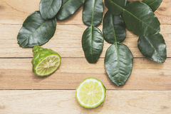 Kaffir lime herbs fresh Royalty Free Stock Photography