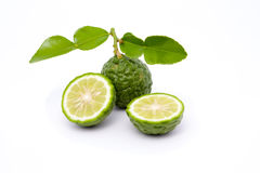 Kaffir lime. Isolated kaffir lime on white background Royalty Free Stock Photos