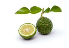 Kaffir lime. Isolated kaffir lime on white background Royalty Free Stock Photography