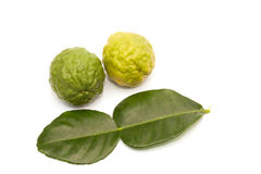 Kaffir lime isolated Royalty Free Stock Photography