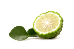 Kaffir lime. Isolated on white background royalty free stock photography