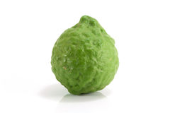 Kaffir Lime isolated on white background. Kaffir Lime is herb from nature Royalty Free Stock Photography