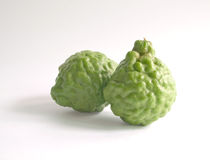 Kaffir lime. With knotty surface Royalty Free Stock Photo