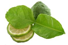 Kaffir lime with leaf isolated on white Royalty Free Stock Images