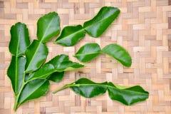 Kaffir lime leaf. On Basket pattern background stock photos