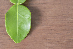 Kaffir lime leaf on wooden table with copyspace with selective f Stock Photo