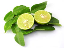 Kaffir lime leaves Royalty Free Stock Image