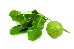 Kaffir Lime and leaves isolated with clipping path Stock Images