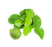 Kaffir Lime and leaves isolated with clipping path Stock Photos