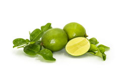 Kaffir Lime Leaves and limes and on white background. Herb ingredients for making Thai food Royalty Free Stock Photography