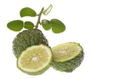 Kaffir Lime Macro. Isolated macro image of a Kaffir Lime stock photography