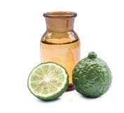Kaffir lime. Royalty Free Stock Images