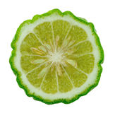 Kaffir lime slice. On white background royalty free stock image