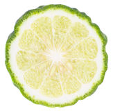 Kaffir Lime Royalty Free Stock Image