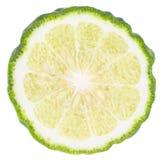 Kaffir Lime. Slice on white background royalty free stock image