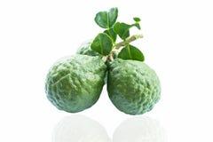 Kaffir Lime  On White Background Stock Images