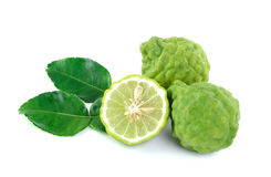 Kaffir lime on white background Royalty Free Stock Photography