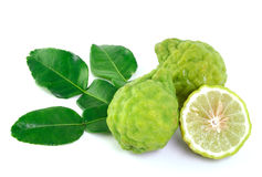 Kaffir lime on white background Royalty Free Stock Photo