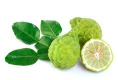 Kaffir lime on white background Royalty Free Stock Photo