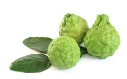Kaffir limes Stock Photo