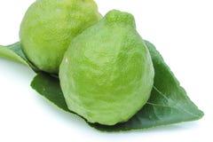 Kaffir Limes with leaf Stock Photo
