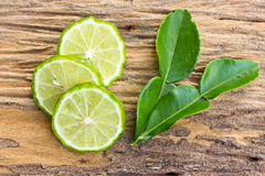 Kaffir limes Royalty Free Stock Photos