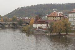 Kafka museum på bankerna av den Vltava floden i Prague Arkivbilder