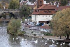 Kafka muzeum w Praga Obrazy Stock