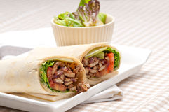 Kafta shawarma chicken pita wrap roll sandwich Royalty Free Stock Image