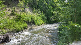 Kagawong river. Royalty Free Stock Photos