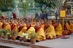 Kagyu monlam in Bodgaya,India Stock Photo