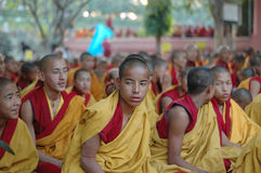 Kagyu monlam in Bodhgaya,India. Tibetan buddhistic monks are praying at 25th International Kagyu Monlam with Chinese Karmapa Ogyen Trinley Dorje December, 22 stock photography