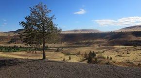 Kah - collines nee de l'Orégon de réservation de ventres Images stock