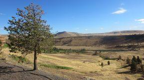 Kah - Nee- Ta Reserve Oregon Hills. I am lucky that yesterday I visited Kah- Nee- Ta Reserve Oregon. It is a tourist area with plenty of scenic views, warm royalty free stock photos